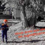 Gemeinschaftsübung von Löschzug und Jugendfeuerwehr