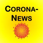 Covid-19-/Corona-Pandemie und Feuerwehrdienst